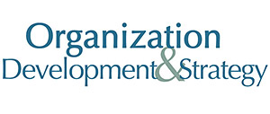 Organization Development and Strategy